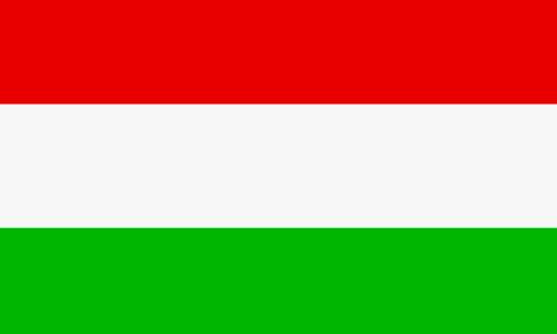 Ungarisch lernen in Sprachschule Aktiv Basel